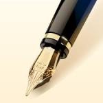Чорнильні ручки